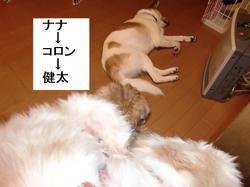 Ken_328_7